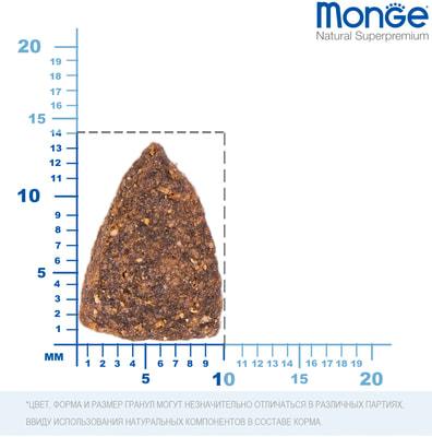 Сухой корм Monge Dog Monoprotein Salmone (лосось и рис) (фото, вид 2)