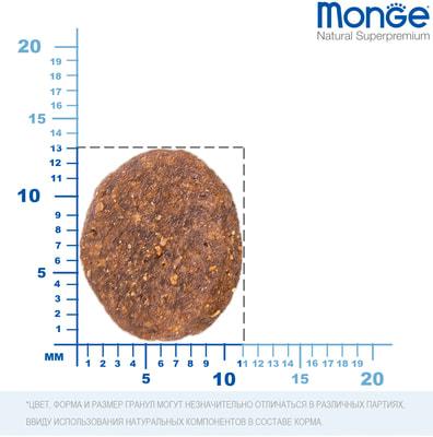 Сухой корм Monge Dog BWild GRAIN FREE All Breeds Adult Acciughe (анчоус, картофелем и горох) (фото, вид 2)