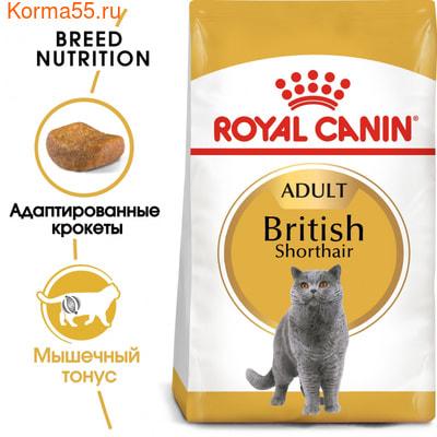 Сухой корм Royal canin BRITISH SHORTHAIR (фото, вид 2)