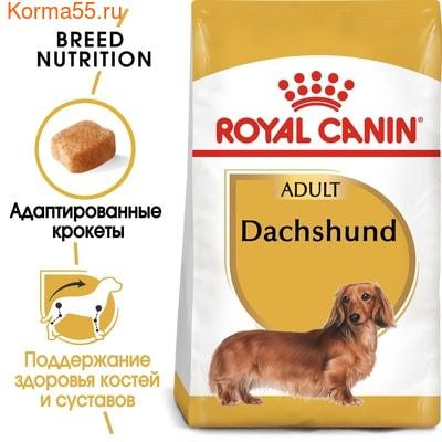 Сухой корм Royal canin DACHSHUND ADULT (ТАКСА ЭДАЛТ) (фото, вид 1)