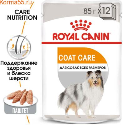 Влажный корм Royal Canin COAT BEAUTY POUCH LOAF (В ПАШТЕТЕ) (фото, вид 1)