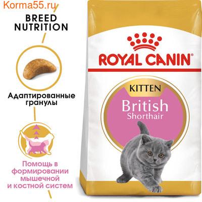 Сухой корм Royal canin KITTEN BRITISH SHORTHAIR (фото, вид 2)