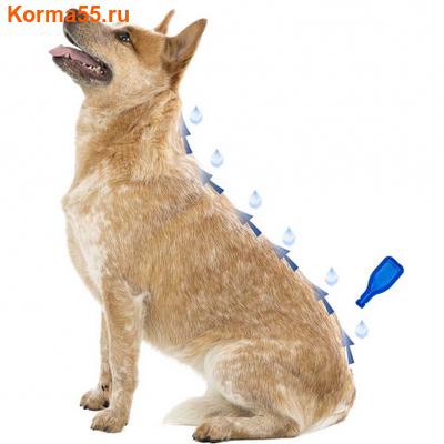 Капли Beaphar IMMO Shield Line-on от паразитов для собак крупных пород (фото, вид 1)