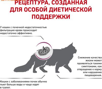 Сухой корм Royal canin RENAL SELECT FELINE (фото, вид 2)