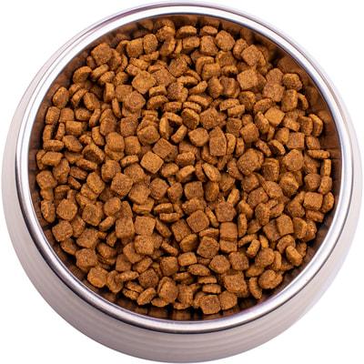 Сухой корм Gemon Cat Indoor (курица и рис) (фото, вид 1)
