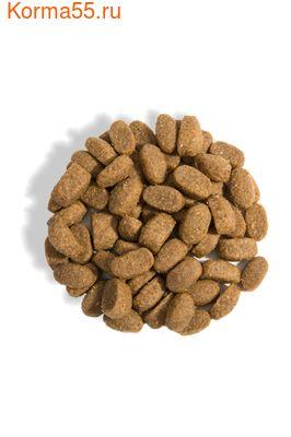 Gina Elite Adult Cat Sterilized (Великобритания) (фото, вид 1)