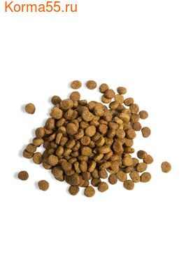 Сухой корм Gina Elite Kitten (Великобритания) (фото, вид 1)