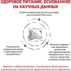 вид 3