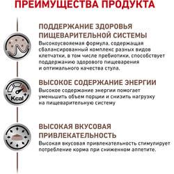 вид 4