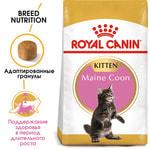 Сухой корм Royal canin KITTEN MAINE COON. Вид 2