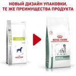 Сухой корм Royal canin DIABETIC DS 37 CANINE. Вид 2