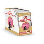 Влажный корм Royal Canin MAINE COON KITTEN (В СОУСЕ). Вид 2