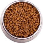 Сухой корм Gemon Cat Indoor (курица и рис). Вид 2