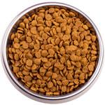 Сухой корм Gemon Cat Adult Complete (курица и индейка). Вид 2