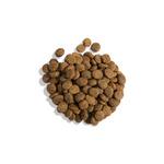 Gina Elite Grain Free Adult Cat Salmon (Великобритания). Вид 2