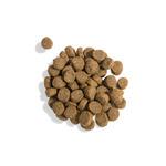 Gina Elite Grain Free Adult Dog Duck, Sweet Potato, Orange (Великобритания). Вид 2