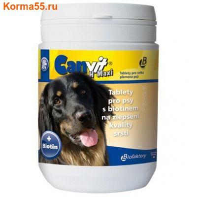 Canvit H Maxi