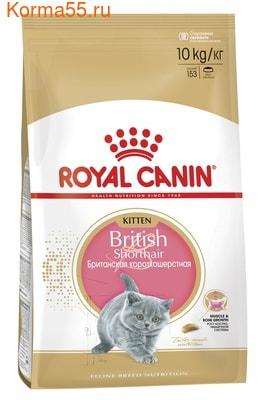 Сухой корм Royal canin KITTEN BRITISH SHORTHAIR (фото)