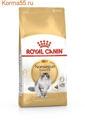Сухой корм Royal Canin Norwegian Forest Cat Adult