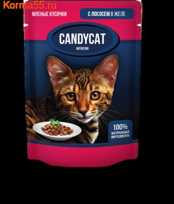 Влажный корм Candycat с лососем в желе (фото)