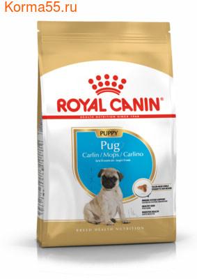 Сухой корм Royal canin PUG PUPPY (фото)