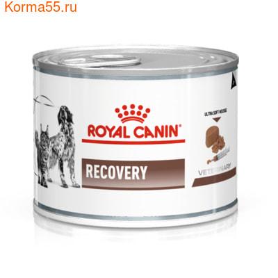 Влажный корм Royal canin RECOVERY CANINE/FELINE банка