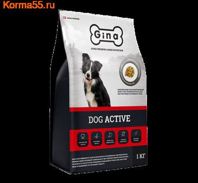 Сухой корм Gina Dog Active (фото)