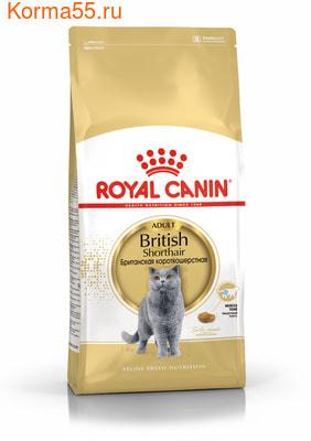 Сухой корм Royal canin BRITISH SHORTHAIR (фото)
