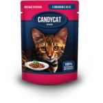 Влажный корм Candycat с лососем в желе