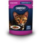 Влажный корм Candycat с индейкой и овощами в желе
