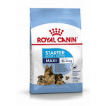 Сухой корм Royal canin MAXI STARTER MOTHER & BABYDOG