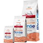 Сухой корм Monge Dog Monoprotein Mini Adult Salmone (лосось и рис)