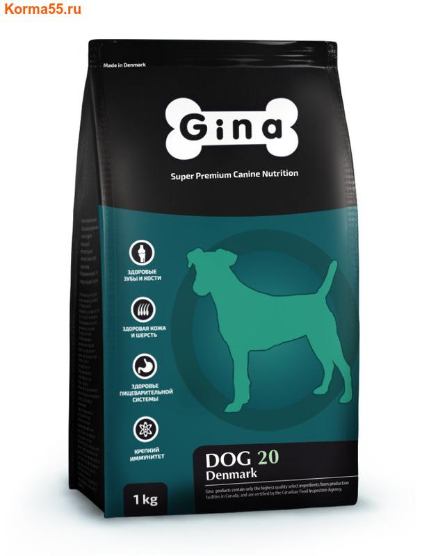Рейтинг кормов для собак анализ и сравнение корма для